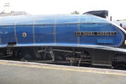 Sir Nigel Gresley Steam Train